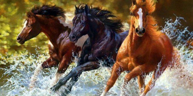 تابلو رنگ روغن طرح اسب